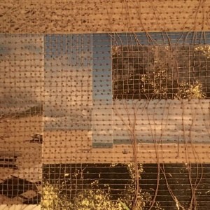 DUTCH LIGHT, Photo collage by Phyllis Odessey, Sewn by Sheila Odessey (4 x 5 inches)