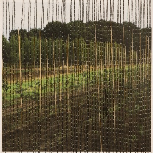 VERTICALITY, photo Phyllis Odessey/ sewing Sheila Odessey (5 x 5 inches)