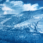 Douro Valley, Portugal, Cyanotype