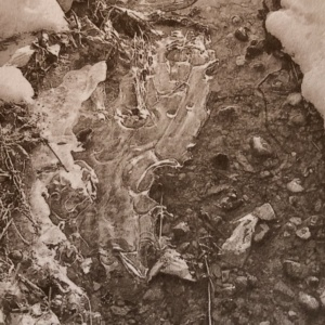 Winter, Salt Print